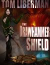 Drawhammer Shield Cover Small